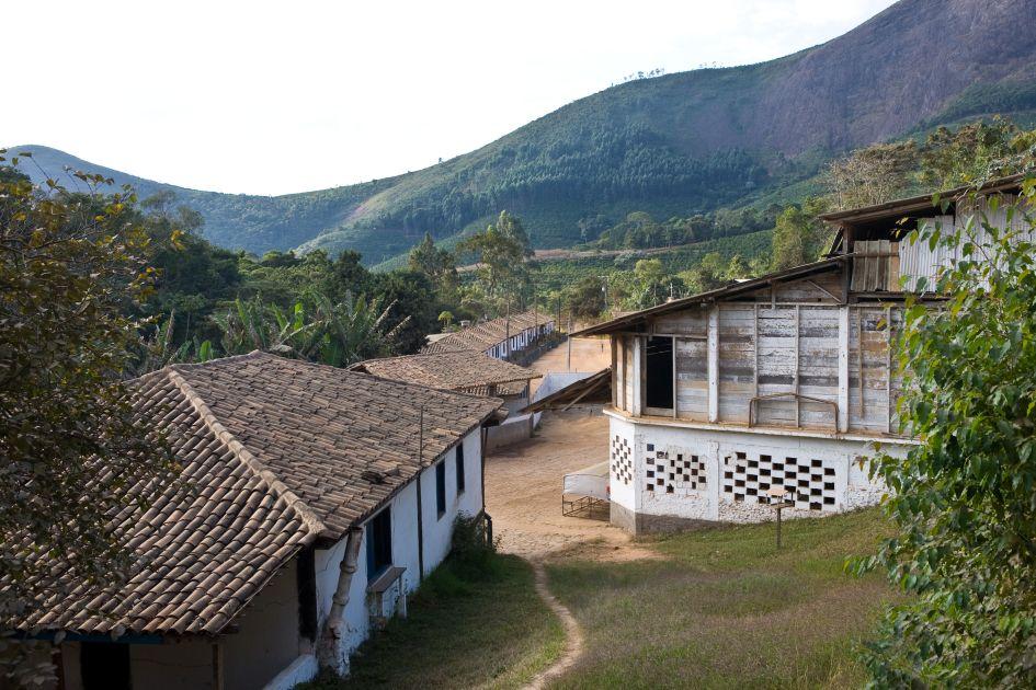 Bergabführende Straße auf der Kaffeefarm Fazendas Dutra gesäumt von kleinen Hütten.